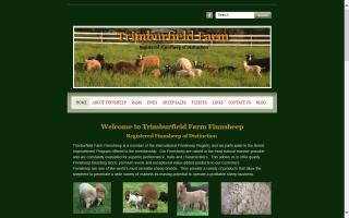 Trimburfield Farm Finnsheep
