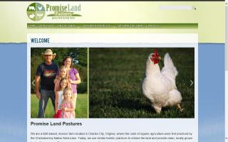 Promise Land Pastures