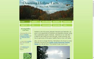 Downing Hollow Farm