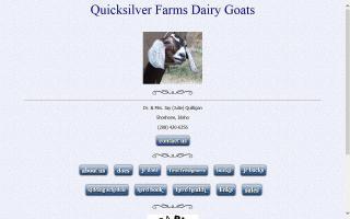 Quicksilver Farms Nigerian Dwarf Dairy Goats