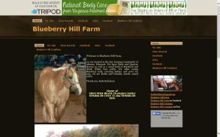 Blueberry Hill Farm Registered Herefords