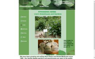 Pipsissewa Herbs