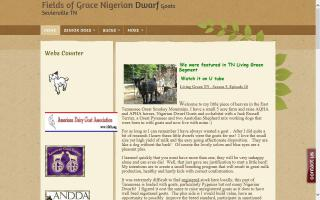 Fields of Grace Nigerians