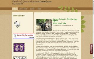 Fields of Grace Nigerians