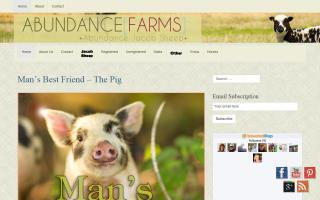 Abundance Farms