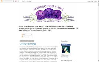 Purple Dog Farm