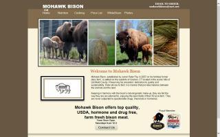 Mohawk Bison
