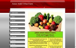 Amen Ankh Urban Farm
