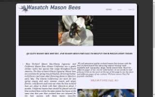 Wasatch Mason Bees