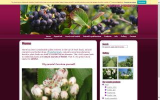 Aronia Fruit