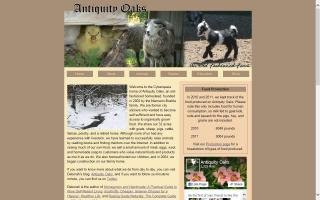 Antiquity Oaks