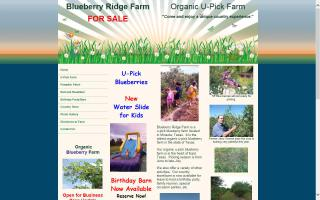Blueberry Ridge Farm Bed and Breakfast