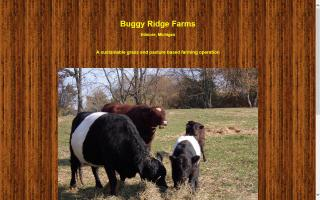 Buggy Ridge Farms