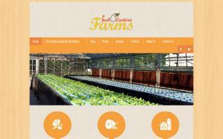 Jack-O-Lantern Farms