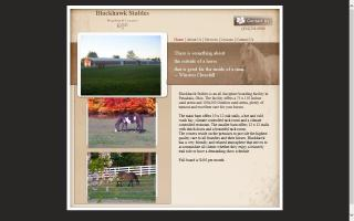 BlackHawk Riding Academy & Stables