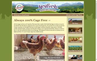 NestFresh Eggs