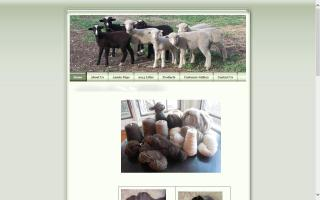 Fleecewood Farm Merinos