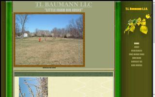 T.L. Baumann, L.L.C.