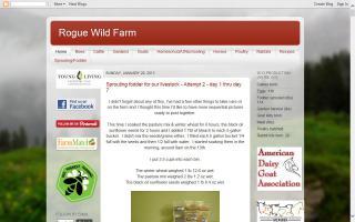 Rogue Wild Farm
